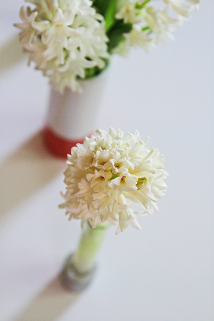 Brewed-Together-Hyacinth-Tube-Bouquets-6