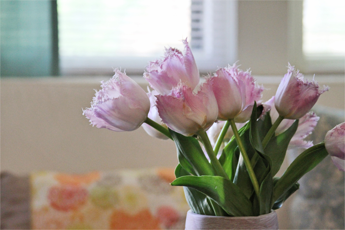Brewed-Together-Pink-Tulips-5