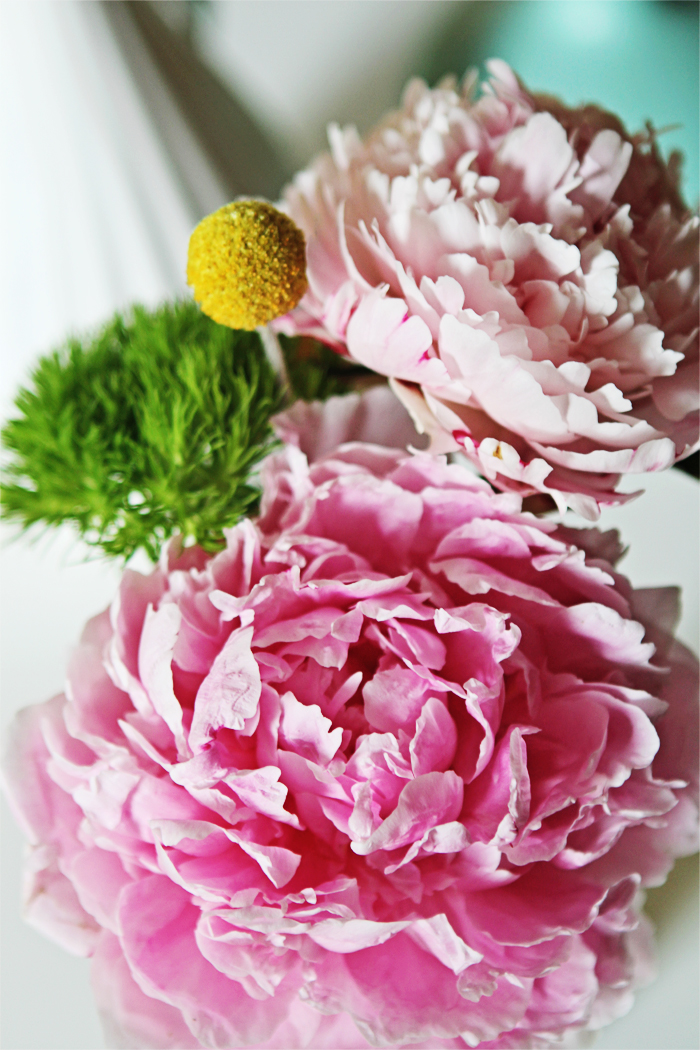 Brewed-Together-Assorted-Peony-Vases-3