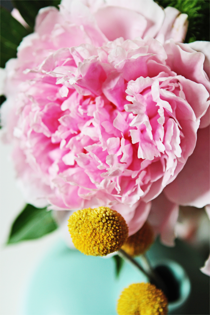 Brewed-Together-Assorted-Peony-Vases-4
